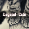 Legend Cats